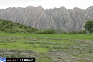مهراب کوه