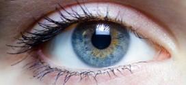 گیاهان دارویی تقویت کننده چشم